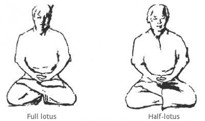halve en volledige lotushouding